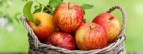 کاهش وزن و لاغری با مصرف این میوه