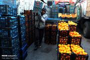 قیمت پرتقال و سیب دولتی چقدر است؟