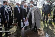 درختکاری وزیر امورخارجه به همراه همسرش / تصاویر