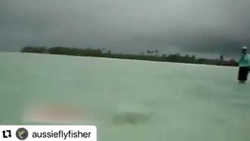 حمله کوسه به مرد ماهیگیر در کنار ساحل / فیلم