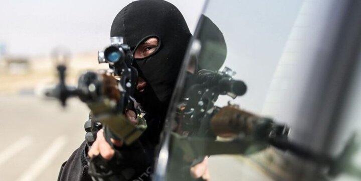 نحوه کشته شدن عامل قتل خانواده ۸ نفره کنگانی از زبان فرمانده انتظامی بوشهر /فیلم