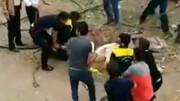 نجات شتر گرفتار در دهنه چاه در قمصر کاشان توسط شهروندان / فیلم