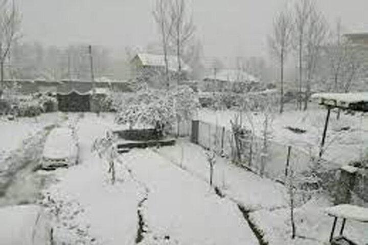بارش برف بهاری در استان مازندران / فیلم