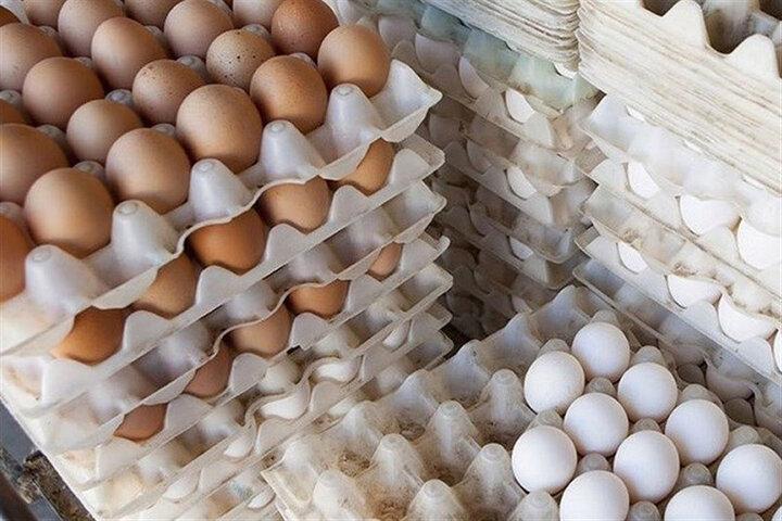 اعلام قیمت تخم مرغ در میادین میوه و ترهبار