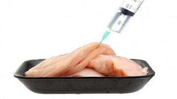 چگونه میتوان مرغ هورمونی از مرغ غیر هورمونی تشخیص داد؟
