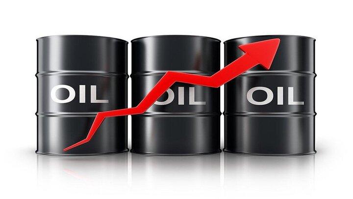 موافقت اعضای اوپکپلاس با افزایش تدریجی عرضه نفت