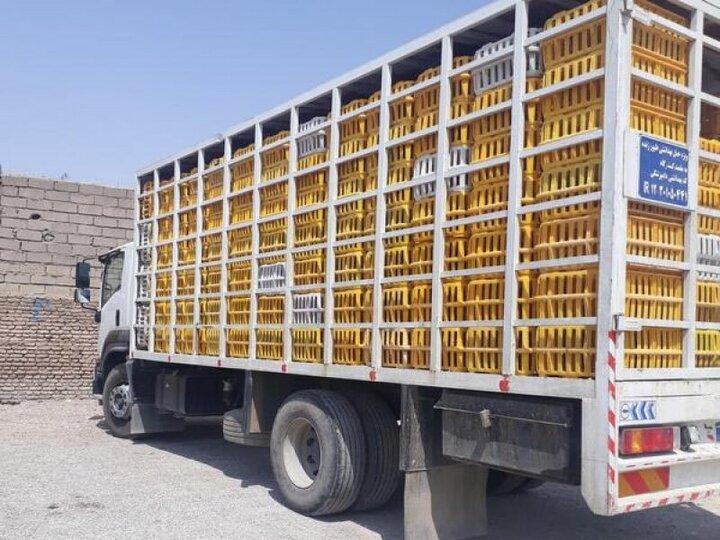 کشف و توقیف کامیون حامل ۱۴۰۰ قطعه مرغ غیرمجاز در یزد