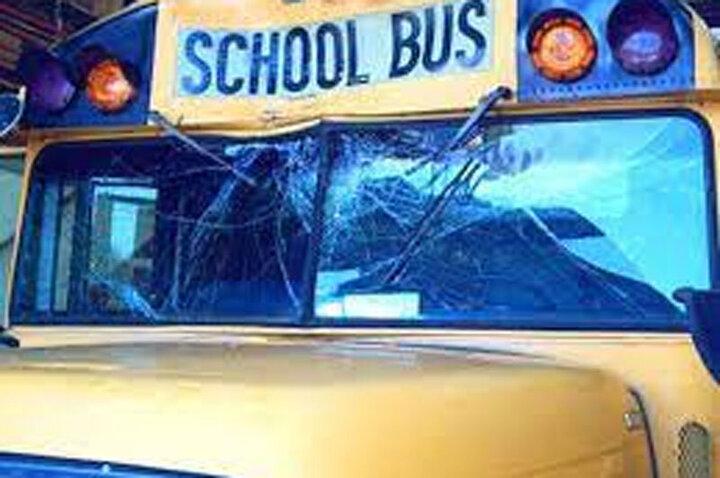 پرت شدن یک گوزن به داخل اتوبوس مدرسه / فیلم