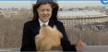 سگ بامزه میکروفن خبرنگار را قاپید/ فیلم