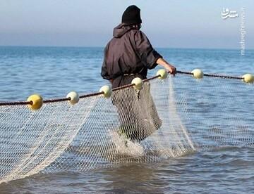 صید ماهی عظیم الجثه توسط صیادان مازندرانی / فیلم