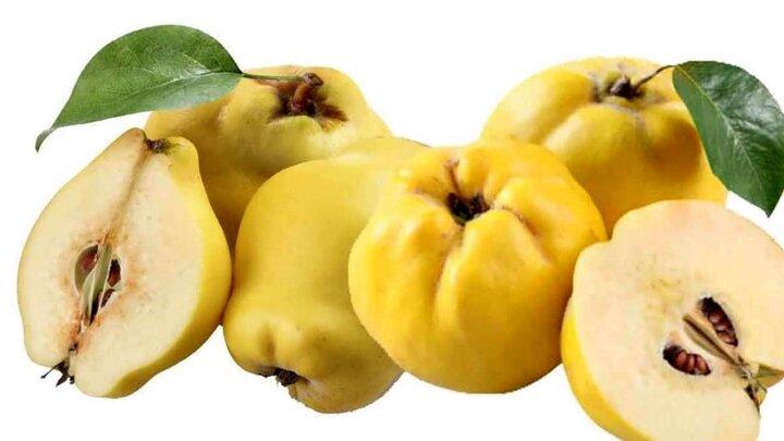 درمان سرفه و کمخونی با مصرف این میوه پاییزی