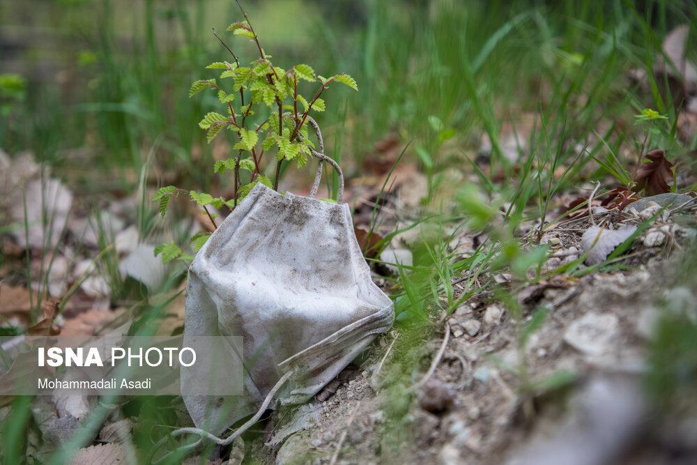 ماسکهای رها شده در طبیعت در ۱۳بدر / تصاویر