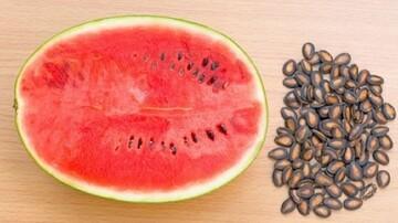 فواید و مضرات مصرف تخمه هندوانه | طبع تخم هندوانه چیست؟