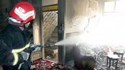 حادثه هولناک با تجمع سوسکها در خانه یک کرمانی/ عکس