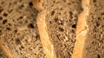معرفی خوراکیهای سرشار از پروتئین