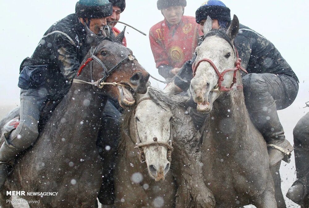 گزارش تصویری از مسابقات بُزکشی در قرقیزستان