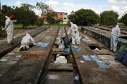 آمار وحشتناک مرگ و میر کرونا در برزیل؛ فاجعهای شبیه به انفجار هستهای