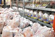 قیمت مرغ در ماه رمضان کاهش مییابد