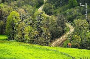 گزارش تصویری از طبیعت زیبای مازندران در فصل بهار