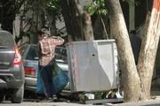 آمار هولناک کودکان کار در ایران؛ ۴هزار کودک تهرانی زبالهگرد هستند