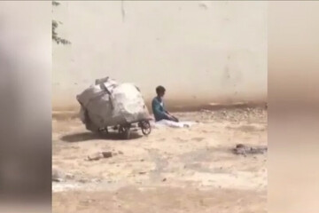 نماز خواندن یک کودک کار سوژه داغ شبکههای مجازی شد/ فیلم