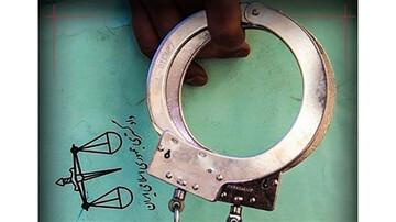باند «سیاه و سفید» در تهران دستگیر شدند