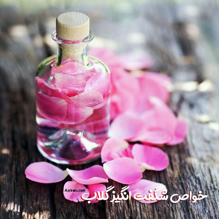 گلاب و این همه خاصیت!