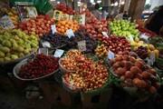 قیمت میوههای نوبرانه چند؟