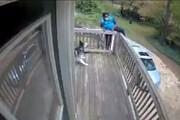 ترس عجیب و خندهدار یک زن از سگ / فیلم