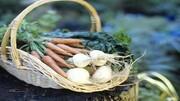 آموزش ساده کاشت سبزیجات در خانه