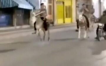 تردد با الاغ و قاطر در ساعت منع تردد شبانه در فارس!