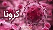کرونا در کرمان همچنان میتازد/ فوت ۸ بیمار در ۲۴ ساعت گذشته