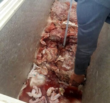 ۲۰۰ کیلو گوشت فاسد از یک رستوران کشف شد!