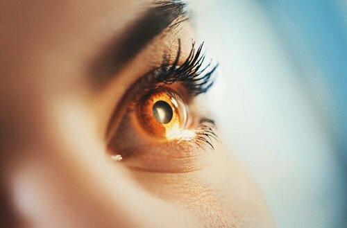 بازگرداندن بینایی به نابینایان ممکن شد!
