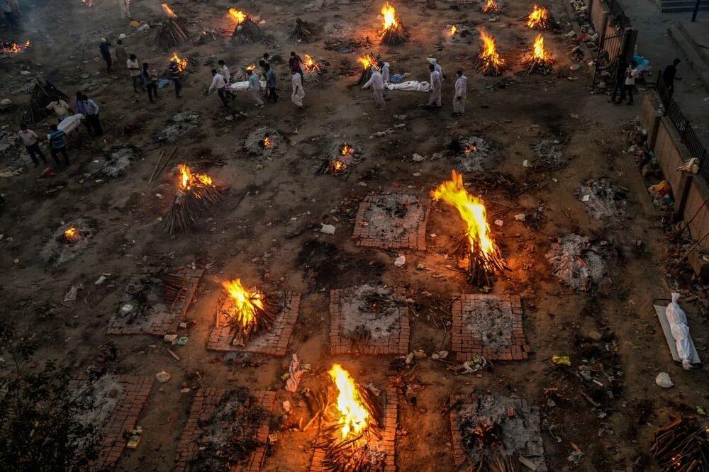 آخرالزمان کشتههای کرونایی در هند