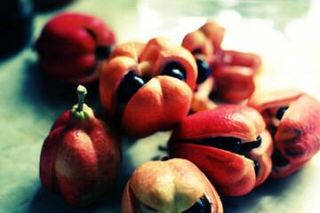 خطرناکترین غذاهای جهان که می توانند موجب مرگ شوند / تصاویر
