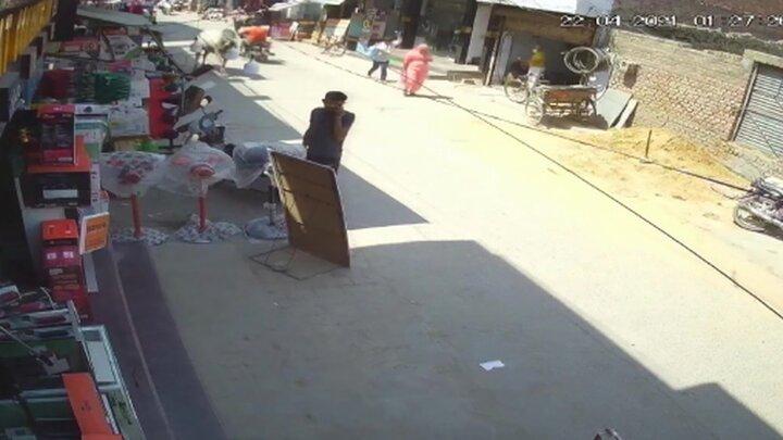 حمله گاو به مرد هندی در خیابان / فیلم