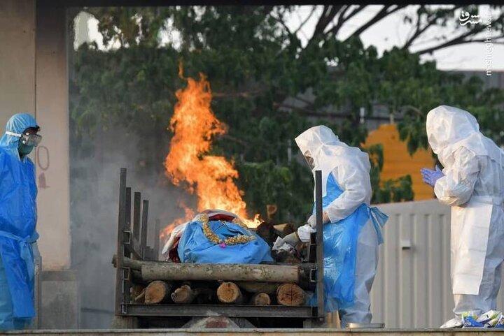 سوزاندن جنازه بیماران کرونایی در کارگاه های آدم سوزی / فیلم