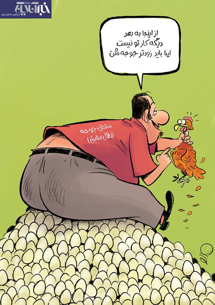 شوخی با سلطان جوجه / عکس