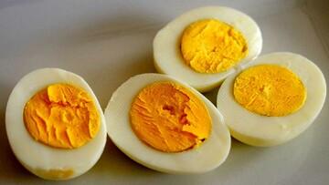 خواص شگفتانگیز تخم مرغ برای بدن؛ از کاهش وزن تا تقویت چشم