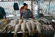 کاهش مصرف ماهی به ۵۰ درصد رسید