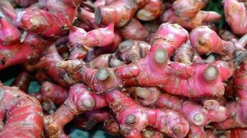 خواص شگفتانگیز زنجبیل قرمز برای سلامتی؛ از درمان سرفه و سردرد تا تقویت سیستم ایمنی