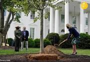 درختکاری همسر رییس جمهور آمریکا با کفش پاشنه بلند / فیلم