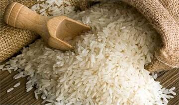 افزایش ۱۳۷ درصدی قیمت برنج وارداتی / جدیدترین قیمت انواع برنج ایرانی در بازار