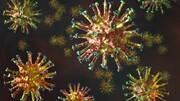 کشندهترین نوع جهش یافته ویروس کرونا مشخص شد