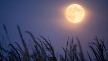 متن و ترجمه دعای روز بیست و دوم ماه مبارک رمضان / صوت و فیلم