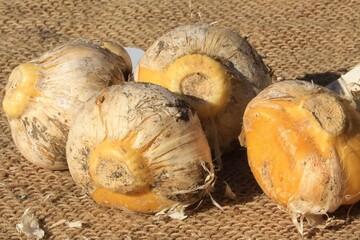 درمان درد مفاصل و کاهش فشار، قند و چربی خون با مصرف این گیاه