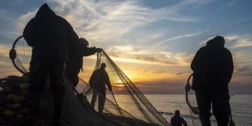 هجده فروند شناور غیرمجاز در خلیج فارس توقیف شدند
