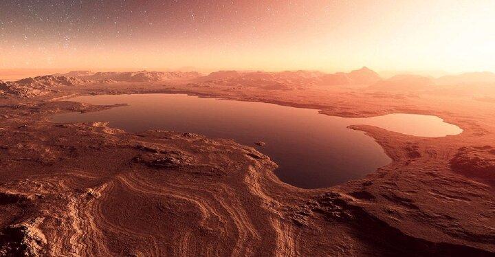 در مریخ «قارچ» وجود دارد! /عکس