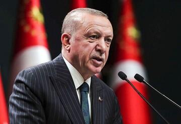 """ترکیه به دنبال احیای """"اتحاد تاریخی"""" با ملت مصر است"""